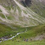 14 привал в горах кавказа