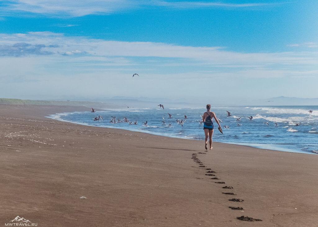 Поход по Камчатке: халактырский пляж тихий океан