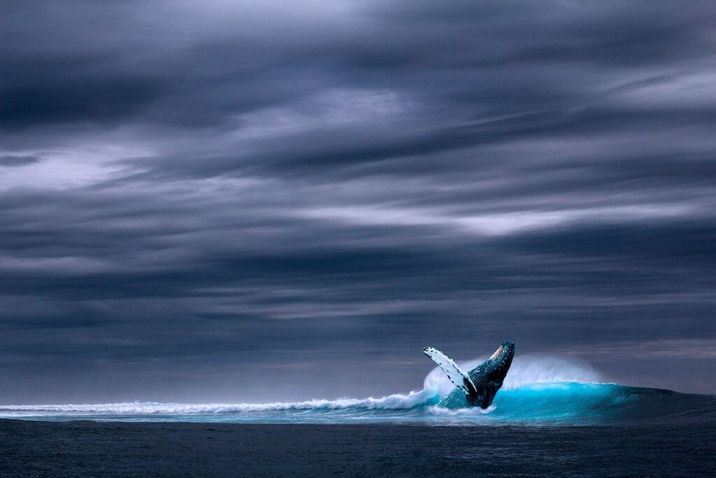 Кольский полуостров: северное сияние, горы и океан