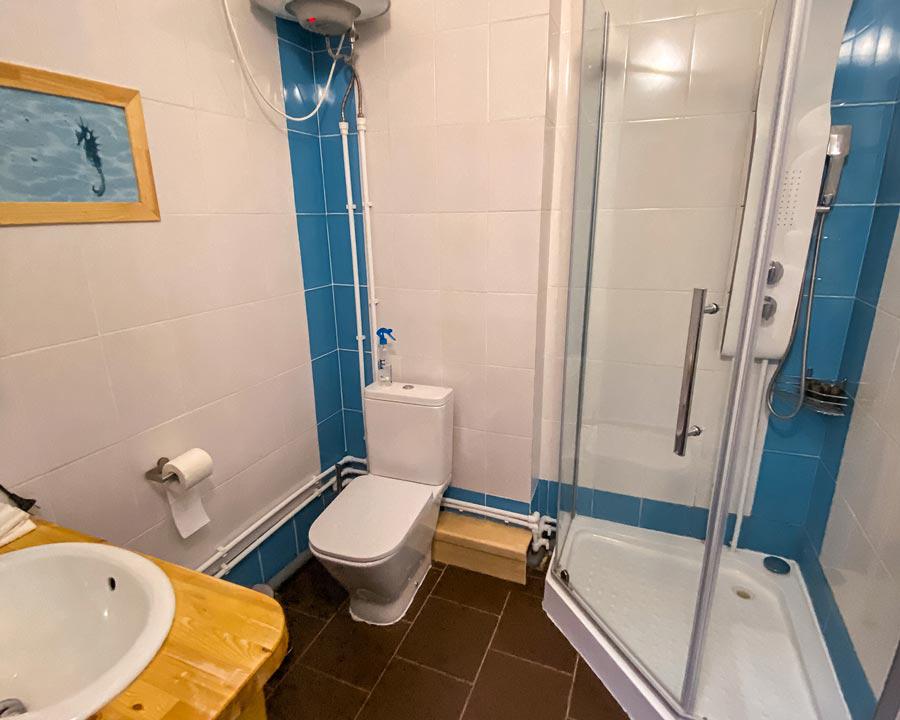 Душевая кабинка и туалет в отеле Кедар грасс